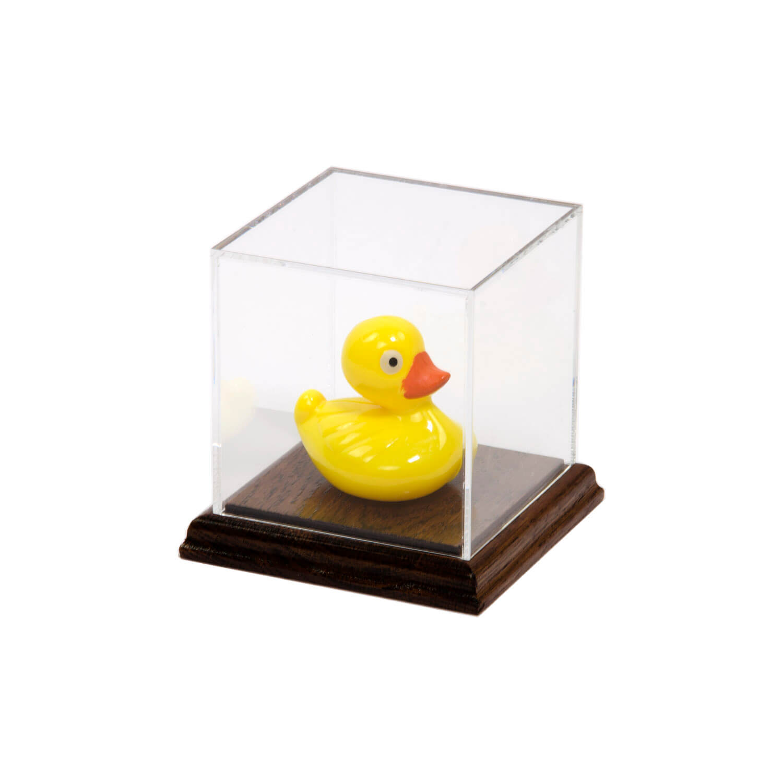 Acrylic Display Case With Wood Base