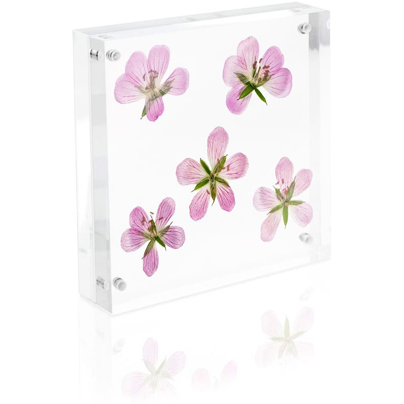 Acrylic Magnetic Block Frame